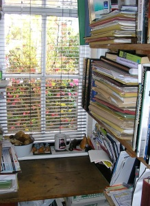One of the author's writing spaces